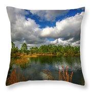 Halpatiokee Lake View #2 Throw Pillow by Tom Claud