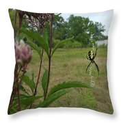 Hangin Around Throw Pillow