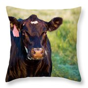 Harriet Has Questions Throw Pillow