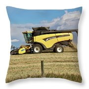 Harvest Time Throw Pillow by Ann E Robson