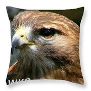 Hawks Mascot 2 Throw Pillow