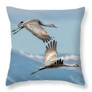 Headed North Throw Pillow