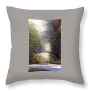 Heading East Throw Pillow by J Reynolds Dail