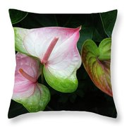 Hearts Together Throw Pillow