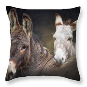 Heckle And Jeckle  Throw Pillow