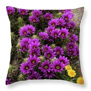 Hedgehog Cactus And Yellow Daisies Throw Pillow