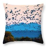 Herd Of Snow Geese In Flight, Soccoro Throw Pillow
