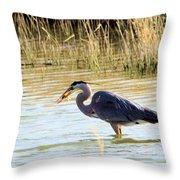 Heron Capturing A Fish Throw Pillow