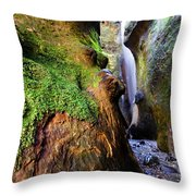 Hidden Falls Sombrio Beach 2 Throw Pillow