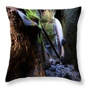 Hidden Falls Sombrio Beach 3 Throw Pillow