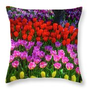 Hidden Garden Of Beautiful Tulips Throw Pillow