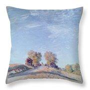 Hill Path In Sunlight, 1892 Throw Pillow
