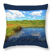 Hint Of Autumn Throw Pillow