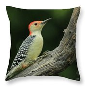 Home On The Log-1 Throw Pillow
