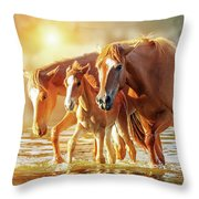 Horse Family Walking In Lake At Sunrise Throw Pillow