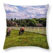 Horse Farm Throw Pillow by Louis Dallara