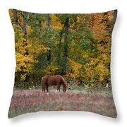Horse In Fall Throw Pillow