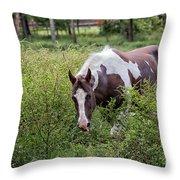 Horse Print 578 Throw Pillow
