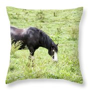 Horse Print 828 Throw Pillow