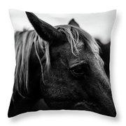 Horse Up-close Throw Pillow