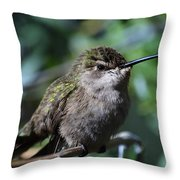 Hummer Throw Pillow