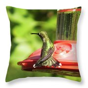 Hummingbird 106 Throw Pillow