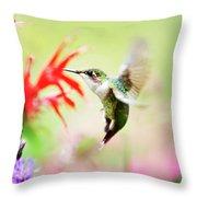 Hummingbird Fancy Throw Pillow