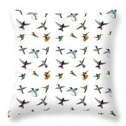 Hummingbirds Of Trinidad And Tobago On White Throw Pillow