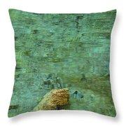 Hypnotizing Lake 1 Throw Pillow by Angelina Tamez