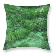 Hypnotizing Lake 2 Throw Pillow by Angelina Tamez