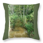 I Am A Small Stream With Big Impact Throw Pillow