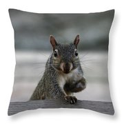 I Am Back Throw Pillow