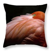 I See You Throw Pillow by Howard Bagley