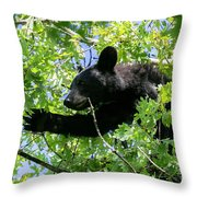 I Want That Acorn Throw Pillow