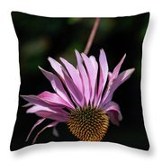 I Will Remember Summer Throw Pillow