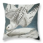 Iceland Falcon Or Jer Falcon By Audubon Throw Pillow