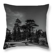 Ickworth House, Image 41 Throw Pillow