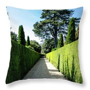 Ickworth House, Image 7 Throw Pillow