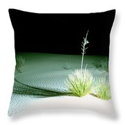 Illuminated Yucca At Night In White Sands National Monument, New Mexico - Newm500 00108 Throw Pillow