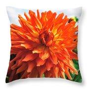 In The Dahlia Garden 1 Throw Pillow