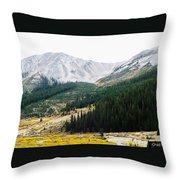 Independence Pass Throw Pillow