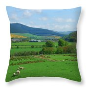 Innerleithen And Tweed Valley Looking East Throw Pillow