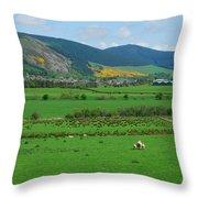 Innerleithen In The Tweed Valley Throw Pillow