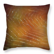 Intensity Throw Pillow by Michelle Wermuth