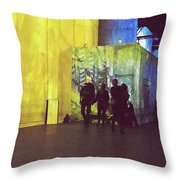 Into The Picture Throw Pillow