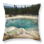 Inviting.... But Deadly. Throw Pillow