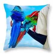 Island Birds  Throw Pillow