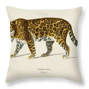 Jaguar  Panthera Onca  Illustrated By Charles Dessalines D' Orbigny  1806-1876  Throw Pillow