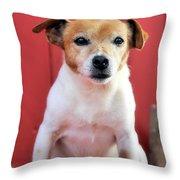 Jake 2 Throw Pillow