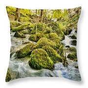 Janet's Foss Flow  Throw Pillow